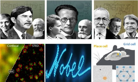 Nobel 2014 en images