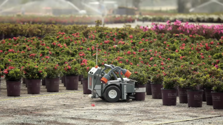 The HV-100 robot moves a plant in a nursery. Photo by Harvest Automation.